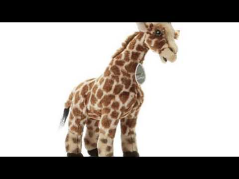 Video See the latest video of Plush Mo Giraffe Baby
