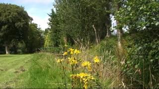 West Kilbride United Kingdom  city photos gallery : Kilbride Glen - West Kilbride Scotland