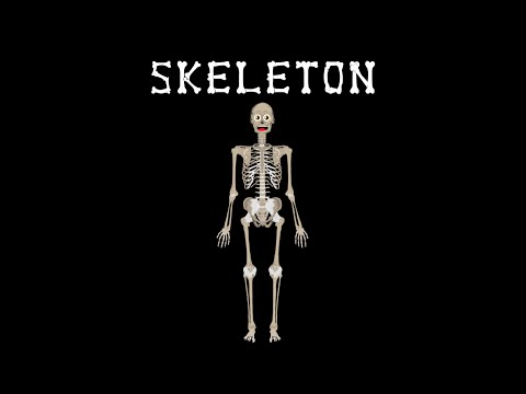 Skeletal System/The Human Body for Kids/Learn about the Human Body for Children