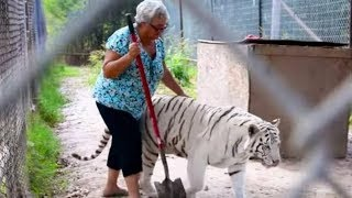 Fearless Grandma's Home Full Of Exotic 'Pets' Is Turning People's Heads by Did You Know Animals?