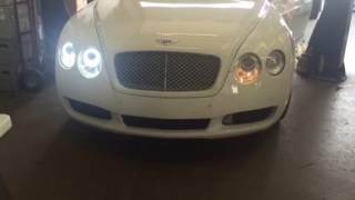 Bentley GT custom Halo switch backs