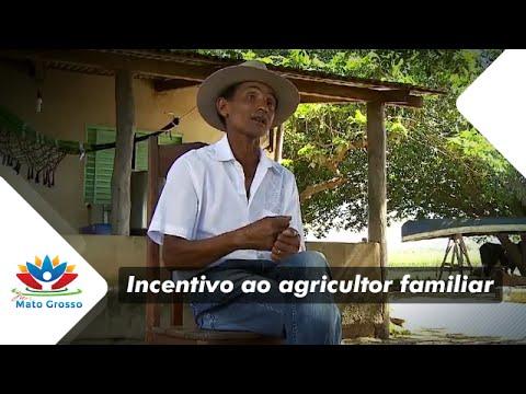 Agricultura familiar e o leite em Diamantino - Mais Mato Grosso