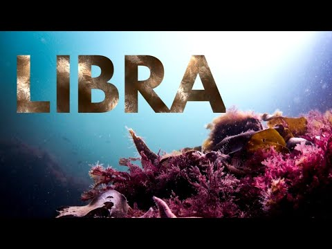 LIBRA GOOD NEWS AND NEW BEGINNINGS - PSYCHIC FORECAST JULY 22 - 29