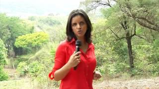 VÍDEO: Emater-MG capacita produtores de mel da Região Metropolitana de BH