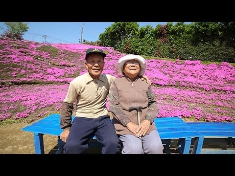 See the Flower Garden a Husband Spent 20 Years Planting For His Blind Wife To Smell.