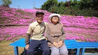 Taman Bunga 'Cinta' Persembahan Suami Untuk Istrinya Yang Buta