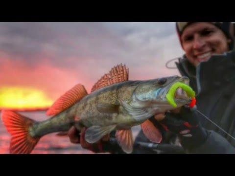 рыбачьте с нами джиг с берега