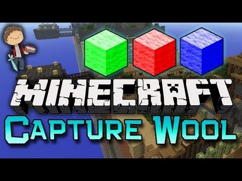 Minecraft - Hey Doods!  http://bit.ly/SubscribeToMyFridge  Much Luv :) Capture the Wool is a Minecraft pvp/strategy based minigame! The objective is to obtain the ...