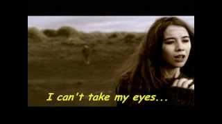 DAMIEN RICE The Blower's Daughter + Lyrics (CLOSER Soundtrack)