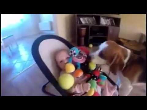 il neonato piange...il suo cane provvede subito !! :)