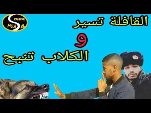 اSkafandri يقصف كل من يهدد Mc talib [القافلة تسير و الكلاب تنبح] #سياسة #اخبار #يوتيوبرز