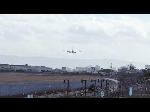 Mistrzowskie lądowanie samolotem podczas silnego wiatru