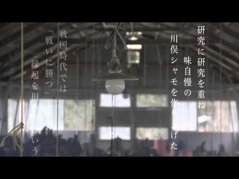 川俣町農業振興公社