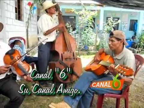Violines Sanmartinecos