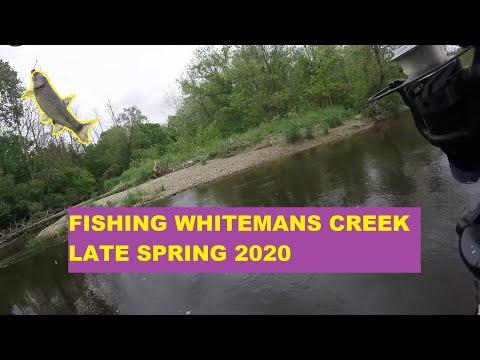 Whitemans Creek Trout Fishing Late Spring 2020