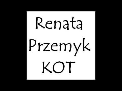 Tekst piosenki Renata Przemyk - Kot po polsku