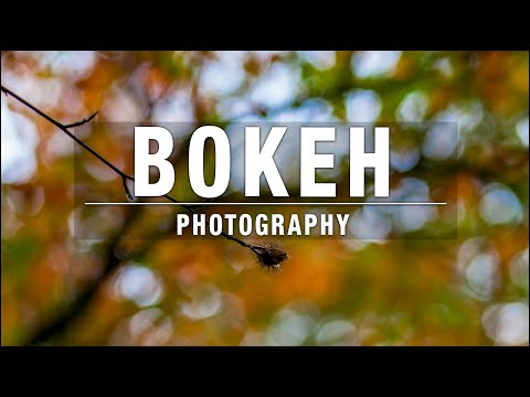 Video Bokeh Photography – The Easy Way download in MP3, 3GP, MP4, WEBM, AVI, FLV January 2017