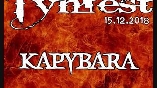 Video Kapybara at Týnfest 2018 - This is Now