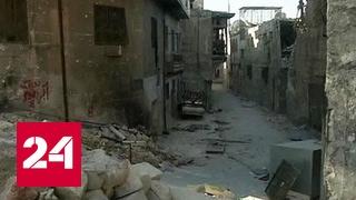 Сирия: суточная сводка Министерства обороны России