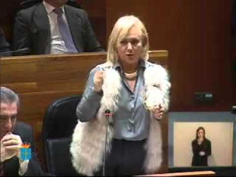 Mercedes Fernández ofrece aprobar los presupuestos si se rebaja el impuesto de sucesiones