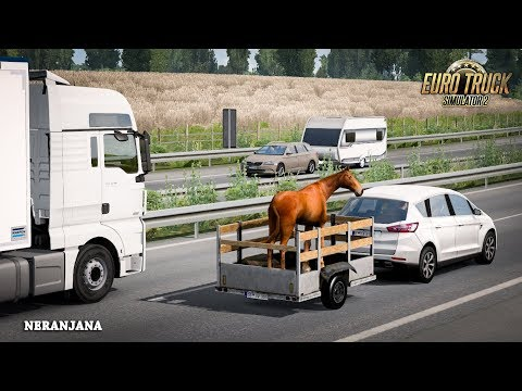 Animal Trailer in Traffic v2.0