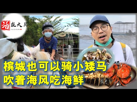 活在大马33:老城新玩,槟城也可以骑小马,到隐藏海边的海鲜店吃魔鬼鱼,活在槟城的北京孩子,不一样的玩法