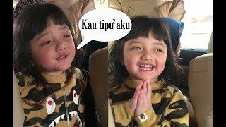 Video Gawat ! Gara-gara mbak2 Asisten A6..Arsy jadi Hafal nyanyi lagu Tiktok yg Lagi Hits MP3, 3GP, MP4, WEBM, AVI, FLV Juni 2018