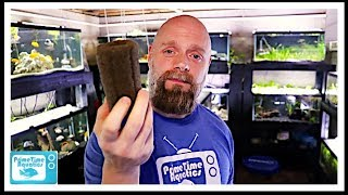 Video Fish Tank Filtration: How Much Do You Need? MP3, 3GP, MP4, WEBM, AVI, FLV Juni 2019