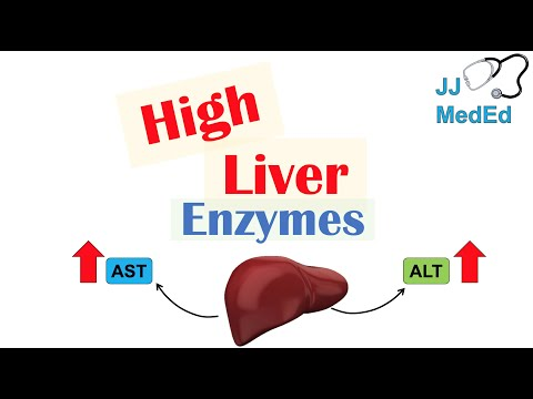 High Liver Enzymes | Aspartate vs Alanine Aminotransferase (AST vs. ALT) | Causes