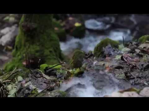 Evoluci�n Hogar Provincial San Jos� - La Noria