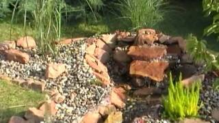 2. Schritt Ufergestaltung mit Bepflanzung