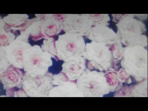 Tekst piosenki Crystal Castles - Violent youth po polsku