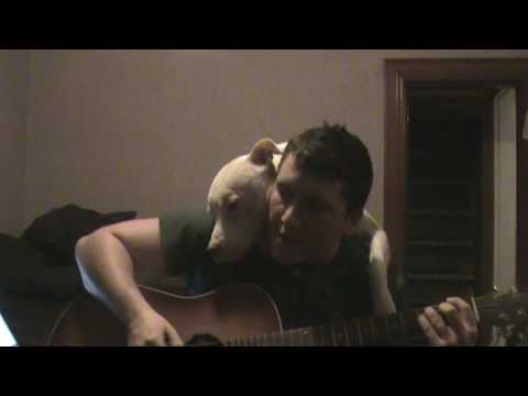He likes when his owner sings for him