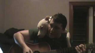 Pitbull ama ouvir seu amigão tocando violão