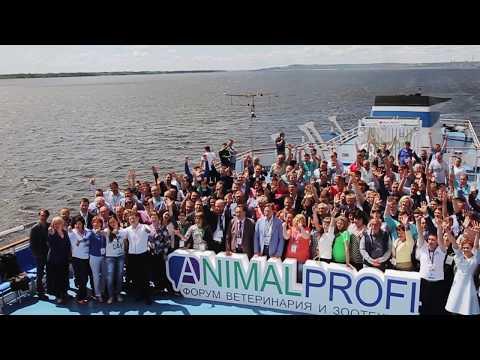Международный Форум ANIMALPROFI: Животноводство 2017