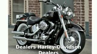 1. 2005 Harley-Davidson Softail Fat Boy Walkaround, Specification