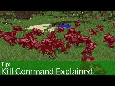 Kill Command Explained