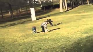 Eagle Kidnaps Kid At The Park!