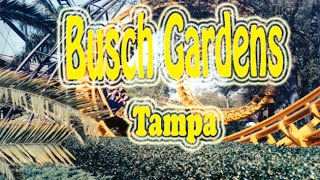 Florida Travel Destination & Attractions  Visit Busch Gardens Tampa ParkShow Busch Gardens Tampa (formerly known as Busch Gardens Africa) is a 335-acre (136...