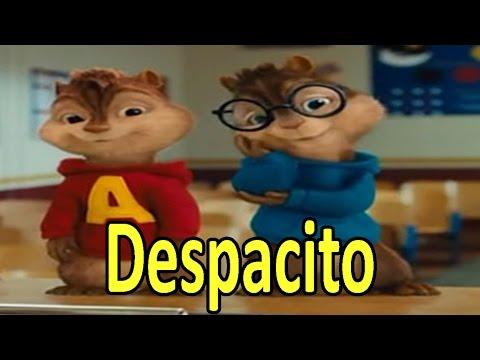 Ardillas - Despacito (Luis Fonsi) | Letra + Descarga