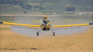 Air Tractor 602 with P & W PT6A-60AG turbine engine pushing out 1050SHP spraying Boll worm in wheat in South Africa. Things happen fast with this big plane flying 6-10ft above ground at speeds up to 140 knots. The ag pilot has to be highly skilled to fly such a big airplane around obstacles in the field while doing aerial application and low flying together.