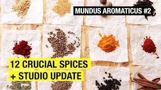 #2 The Only 12 Spices You Need To Know About ! MUNDUS AROMATICUS by Alex French Guy Cooking