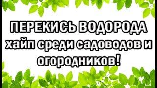 abe_Dpag3Hk