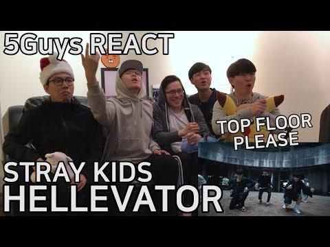 Video [DOPE DROP] Stray Kids - Hellevator (5Guys MV REACT) download in MP3, 3GP, MP4, WEBM, AVI, FLV January 2017