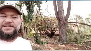 Temporal causa estragos em Marília e região