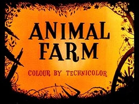 New Empress Magazine Video Blog: Animal Farm
