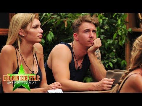 Dschungelcamp 2018: 12 Stars in der Dschungelschule ...