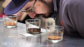 Inside the World of High-End Coffee