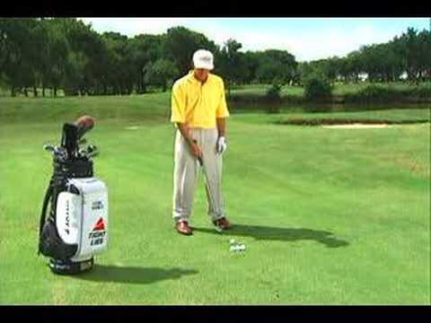 Golf Tip: The Basic Pitch; Hank Haney