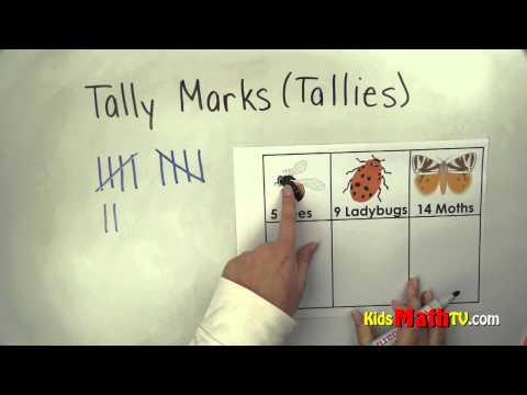 Counting with tally marks or tallies, Kinder, 1st, 2nd grades math video